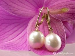 Gold Ohrringe mit schönen weißen Perlen