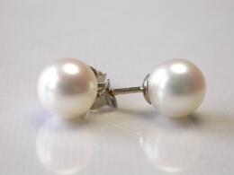 Runde, weiße Perlen Ohrstecker, 9-9,5 mm, AAA-Qualität