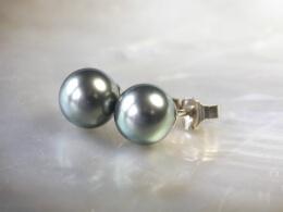 Tahiti Perlen Ohrstecker, AAA, 8,0-9,0 mm