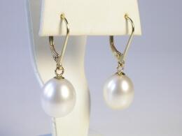 Goldohrhänger mit schönen Perlen 10-11mm