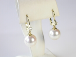 Glanzvolle Perlen Diamant Ohrhänger, AAA, 8-10mm