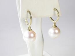 Goldene Kreolen mit runden Perlen,  AAA