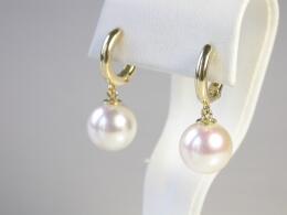Runde weiße Perlen höchster Qualität an Goldcreolen