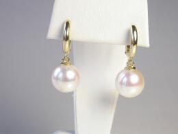 Runde weisse Perlen höchster Qualität an Goldcreolen